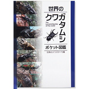 世界のクワガタムシ ポケット図鑑 関東当日便