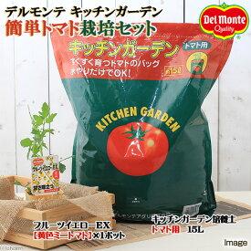 (観葉植物)デルモンテ 簡単トマト栽培セット(フルーツイエローEX)(1セット) 家庭菜園