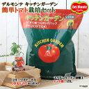 (観葉)私の菜園 デルモンテ キッチンガーデン 簡単トマト栽培セット(フルーツルビーEX) 家庭菜園
