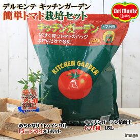 (観葉植物)デルモンテ 簡単トマト栽培セット(めちゃなり!トゥインクル)(1セット) 家庭菜園