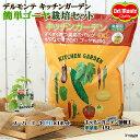 (観葉植物)私の菜園 デルモンテ キッチンガーデン 簡単ゴーヤ栽培セット(スーパーゴーヤ白) 家庭菜園