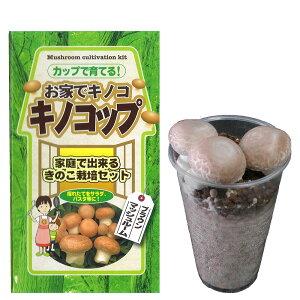 (観葉植物)きのこ栽培キット キノコップ マッシュルーム ブラウン種(1個) 家庭菜園