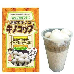 (観葉植物)きのこ栽培キット キノコップ マッシュルーム ホワイト種(1個) 家庭菜園