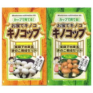 (観葉植物)きのこ栽培キット キノコップ マッシュルーム ブラウン&ホワイト種(各1個) 家庭菜園