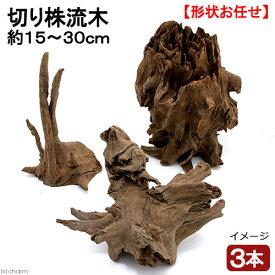 形状お任せ 切り株流木 3本 約15〜30cm レイアウト 盆栽