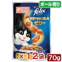 フィリックス 我慢できない隠し味 ゼリー仕立て サーモン&トマト味 70g 12袋入り 関東当日便