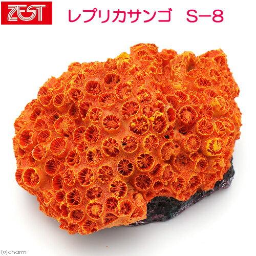 ゼンスイ ZEST レプリカサンゴ S−8 関東当日便