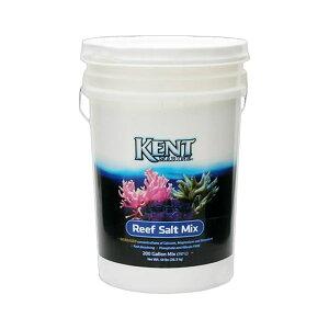 人工海水 Kent Reaf Salt 200G(760L用) バケツ 沖縄不可