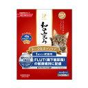 日清 ジェーピースタイル 和の究み 1歳から 遊び盛りの成猫用 240g(40g×6パック) 関東当日便