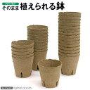 ジフィーポット(そのまま植えられる鉢) 丸型8cm(30個入) サカタのタネ 関東当日便