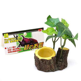 三晃商会 SANKO 緑のお皿 クワガタ カブトムシ 昆虫ゼリー エサ皿 16g用 関東当日便