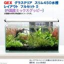 お一人様5点限り GEX グラステリア スリム450 レイアウトフルセットD(外国産ミックスグッピー)水槽セット 本州・四国限定