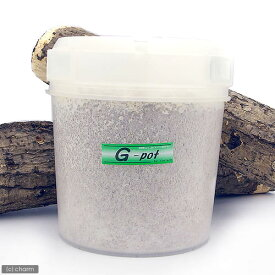冷蔵★菌糸ビン G−pot 3000cc 1本 別途クール手数料 常温商品同梱不可