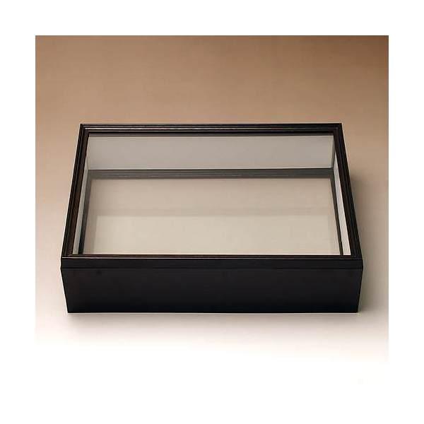 シーラ箱 (両面ガラスタイプ) 昆虫 標本用品 標本箱 関東当日便