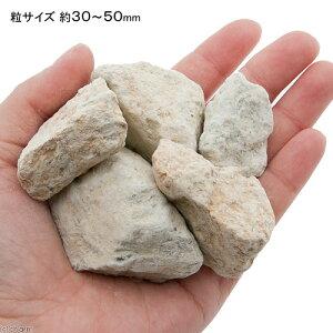 ゼオライト鉱石(モルデナイト)特大(#3050)0.7kg