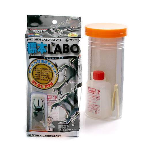 フジコン 標本LABO かんたん昆虫標本セット(1〜2匹用) 昆虫 標本用品 標本セット 関東当日便