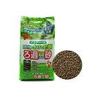 GEX ろ過砂ピュアソイル ブラウン 2Kg ジェックス 熱帯魚 用品 関東当日便