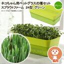 スプラウトファーム 24型 グリーン ネコちゃん用ペットグラスの種セット 水耕栽培 家庭菜園 関東当日便