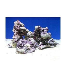 (海水魚)Sグレードライブロック M−Lサイズミックス(5kg)(形状お任せ) 沖縄別途送料 北海道航空便要保温