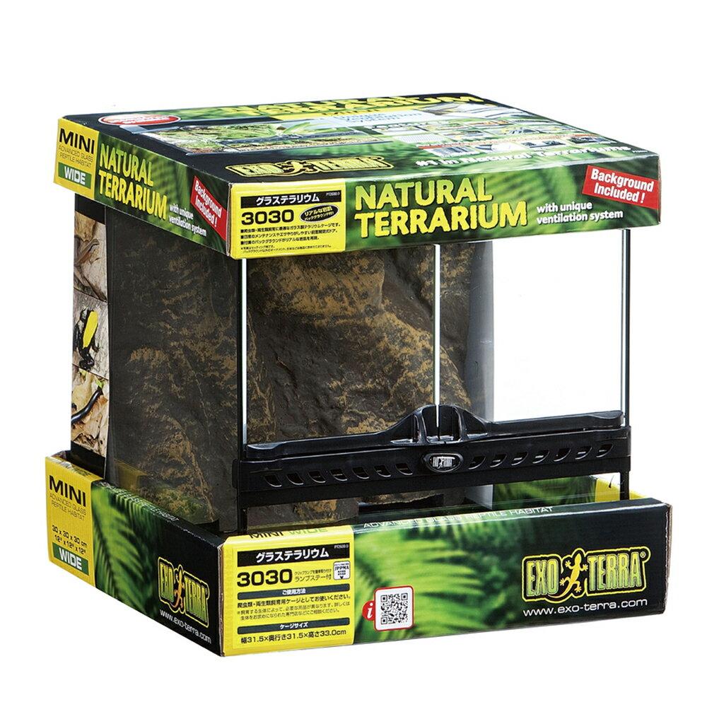 GEX エキゾテラ グラステラリウム 3030 爬虫類 飼育 ケージ ガラスケージ お一人様2点限り 関東当日便