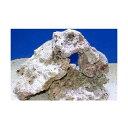 (海水魚)ベースロック S−Mサイズミックス(4kg)(形状お任せ) 北海道・九州航空便要保温
