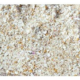 (海水魚)バクテリア付き ライブアラゴナイトサンド(約3L) 海水水槽用底砂