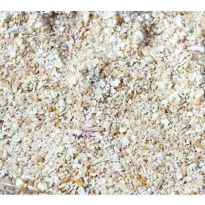 バクテリア付きライブアラゴナイトサンド(約6L)海水水槽用底砂関東当日便