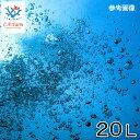 C.P.Farm直送(海水魚)石垣島産 天然海水 20L(1個口相当)別途送料 海水