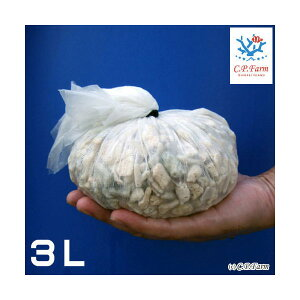 C.P.Farm直送(海水魚ろ材)バクテリア着き熟成ろ材LLサイズ3リットル(0.35個口相当)別途送料