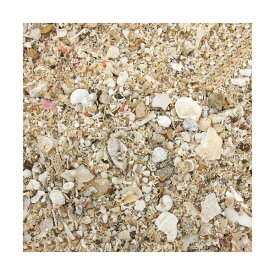 生産者直送 アラゴナイトサンド 軽洗浄済み 1kg(約0.8L)(0.12個口相当) 海水用品 底砂 別途送料