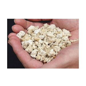 C.P.Farm直送クラッシュコーラルロック軽洗浄済み1kg(約0.7L)粉砕サンゴ砂(0.12個口相当)別途送料