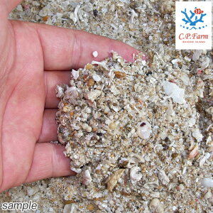 C.P.Farm直送ライブアラゴナイトサンド5kg(約4L)(0.32個口相当)サンゴ砂底砂別途送料