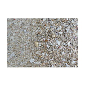 C.P.Farm直送ライブアラゴナイトサンド24kg(約19.2L)送料込み(1個口相当)サンゴ砂底砂