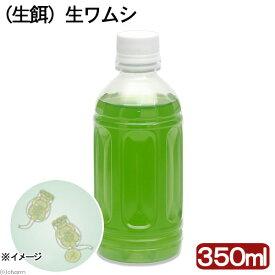 (海水魚)生餌 生ワムシ(シオミズツボワムシ)(350ml) 北海道航空便要保温