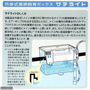 外掛式産卵飼育ボックスサテライト