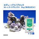 (海水魚)Sグレードライブロック M−Lサイズミックス(5kg)(形状お任せ)+PSBQ10 海水用 150ml  本州・四国限定