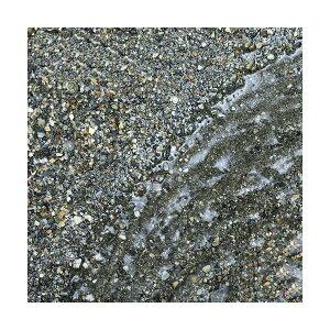 (海水魚)ばくとサンド(立上げ簡単サンド)ブラックサンド1リットルバクテリア付きライブサンド