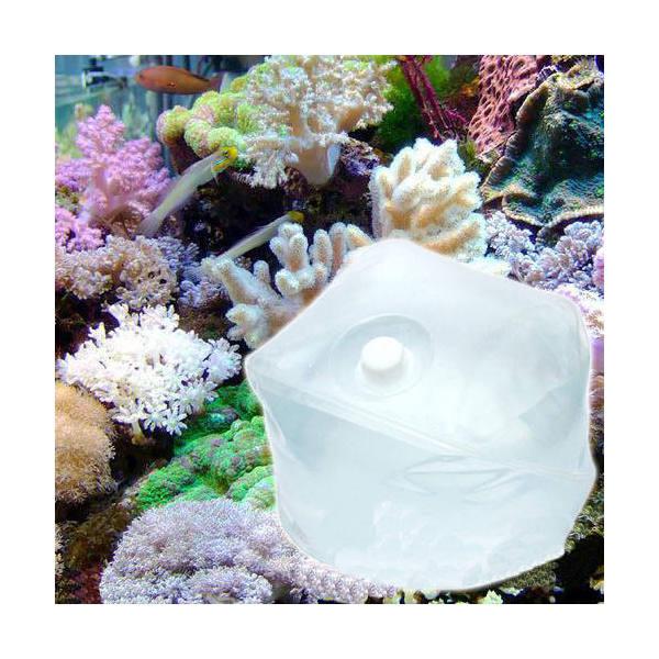 (海水魚)足し水くん テナーボトル 天然海水(海洋深層水) 20リットル 送料無料 航空便不可・沖縄不可