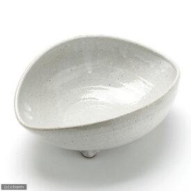 益子焼 足付楕円鉢 白マット 盆栽鉢 関東当日便