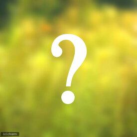 (水草)おまかせ後景草(水上葉) 3種×5本セット(無農薬)(計15本)