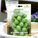 イタリア ブリュッセルスプラウト 芽キャベツ ロングアイランド