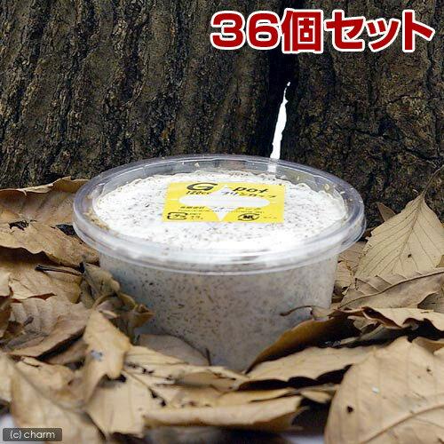 メーカー直送 菌糸カップ G−カップ 120cc 36個 お一人様1点限り