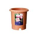 リッチェル バラ鉢 ブラウン 6号 φ18×18cm  バラ用 イングリッシュローズ フレンチローズ 関東当日便
