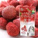 マルカン イチゴのやわらか果実 12g 関東当日便