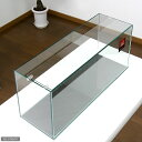 GEX お一人様1点限り グラステリア スリム600 (60×20×25)60cm水槽(単体) ジェックス【HLS_DU】 関東当日便