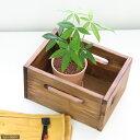 杉製オイルステイン ナチュラル木箱 小(W22×D16×H12cm) 関東当日便