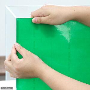バックスクリーン ARTI(アルティ)30 ライトグリーン(クリアタイプ)(35×50cm) 関東当日便