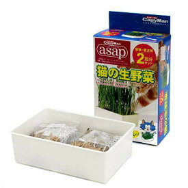 キャティーマン asap 猫の生野菜 2回分 猫草 ドギーマン 関東当日便