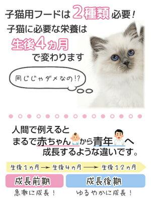 ロイヤルカナンベビーキャット成長前期の子猫用生後1〜4ヶ月齢まで2kg