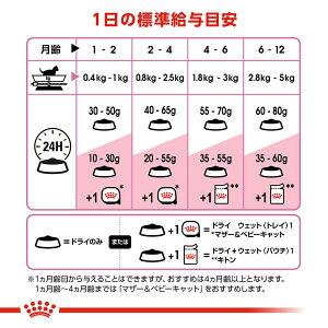 ロイヤルカナン猫キトン成長後期の子猫用2kg3182550702423お一人様5点限り【KN_201603_01】ジップ付関東当日便